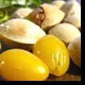 SUPLIMENTELE NUTRITIVE SAU FRUMUSETEA CARE VINE DIN INTERIOR
