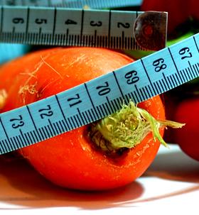 DIETELE: ESEC SAU SUCCES?